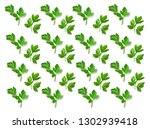 parsley isolated. pattern of ... | Shutterstock . vector #1302939418