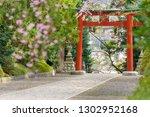 Stock photo torii way and sakura at osaki hachimangu shrine where is a shinto buddhist temple shrine in sendai 1302952168