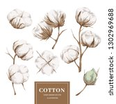 cotton plant collection | Shutterstock .eps vector #1302969688