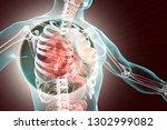 pneumonia medical concept  3d... | Shutterstock . vector #1302999082