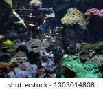 dark colored seabed with fishes | Shutterstock . vector #1303014808