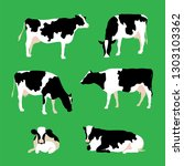 Set Of Cows In Different Poses...
