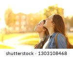 side view portrait of two happy ... | Shutterstock . vector #1303108468