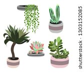 Set Of Tropical Plants In...