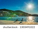 majorca  spain   january 12 ... | Shutterstock . vector #1303491022