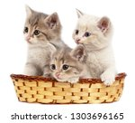 three kittens in a basket on a... | Shutterstock . vector #1303696165