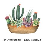 watercolor composition of cacti ... | Shutterstock . vector #1303780825