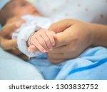mother hand holding asian...   Shutterstock . vector #1303832752
