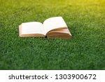 old books open on green grass.   Shutterstock . vector #1303900672