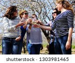 smiling real mature women is... | Shutterstock . vector #1303981465