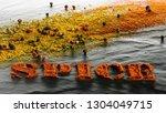 spice. turmeric  paprika  black ... | Shutterstock . vector #1304049715