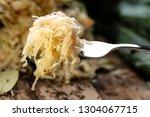 sauerkraut on a fork with a...   Shutterstock . vector #1304067715