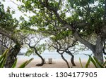beach with trees and sunbeds on ... | Shutterstock . vector #1304177905