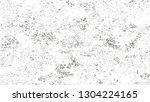 grainy distress grunge brush... | Shutterstock .eps vector #1304224165
