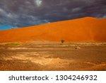 dunes in the desert  namib... | Shutterstock . vector #1304246932