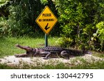 Crocodile And Yellow Sign  No...