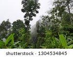 foggy forest landscape | Shutterstock . vector #1304534845