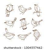 hand drawn birds in different... | Shutterstock .eps vector #1304557462