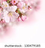 Stock photo spring border or background with pink blossom 130479185