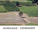 zdencina  croatia   july 19 ...   Shutterstock . vector #1304846005