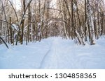 path through beutiful lonely... | Shutterstock . vector #1304858365
