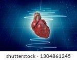 3d illustration  anatomy of... | Shutterstock . vector #1304861245