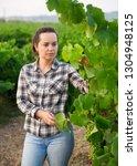 woman proffesional winemaker... | Shutterstock . vector #1304948125