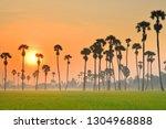 Wonderland Of The Rice Field I...