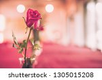 red rose in romantic background ... | Shutterstock . vector #1305015208