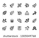 medical herbs flat glyph icons. ... | Shutterstock .eps vector #1305049768
