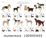 hunting dogs collection... | Shutterstock .eps vector #1305053455