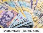 Romanian Banknotes  Close Up....