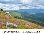 spring in mountains with... | Shutterstock . vector #1305236155