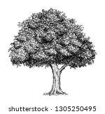 cartoon doodle drawing... | Shutterstock . vector #1305250495