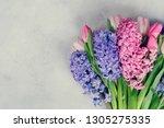 hyacinth fresh flowers   Shutterstock . vector #1305275335
