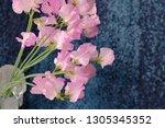 sweet pea flower | Shutterstock . vector #1305345352