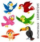 set of bird character... | Shutterstock .eps vector #1305347245