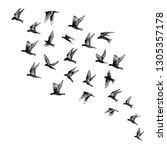 set of black hand drawn strokes ... | Shutterstock .eps vector #1305357178
