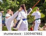 russia  samara  august 2018 ... | Shutterstock . vector #1305487882