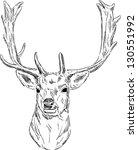 Vector   Portrait Fallow Deer...
