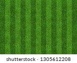 green grass field background... | Shutterstock . vector #1305612208