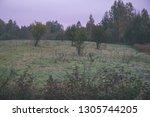 empty countryside landscape in... | Shutterstock . vector #1305744205