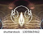 abstract symmetrical... | Shutterstock . vector #1305865462