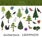 taiga biome  boreal snow forest.... | Shutterstock .eps vector #1305994255
