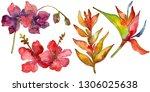 loral botanical flower. wild... | Shutterstock . vector #1306025638