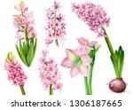set of watercolor pink...   Shutterstock . vector #1306187665