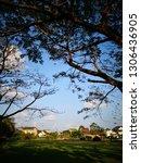 the beautiful summer landscape...   Shutterstock . vector #1306436905