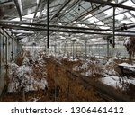 abandoned and neglected...   Shutterstock . vector #1306461412