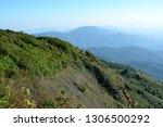 forest trail  hill evergreen... | Shutterstock . vector #1306500292