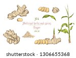 set colorful hand drawn of...   Shutterstock .eps vector #1306655368